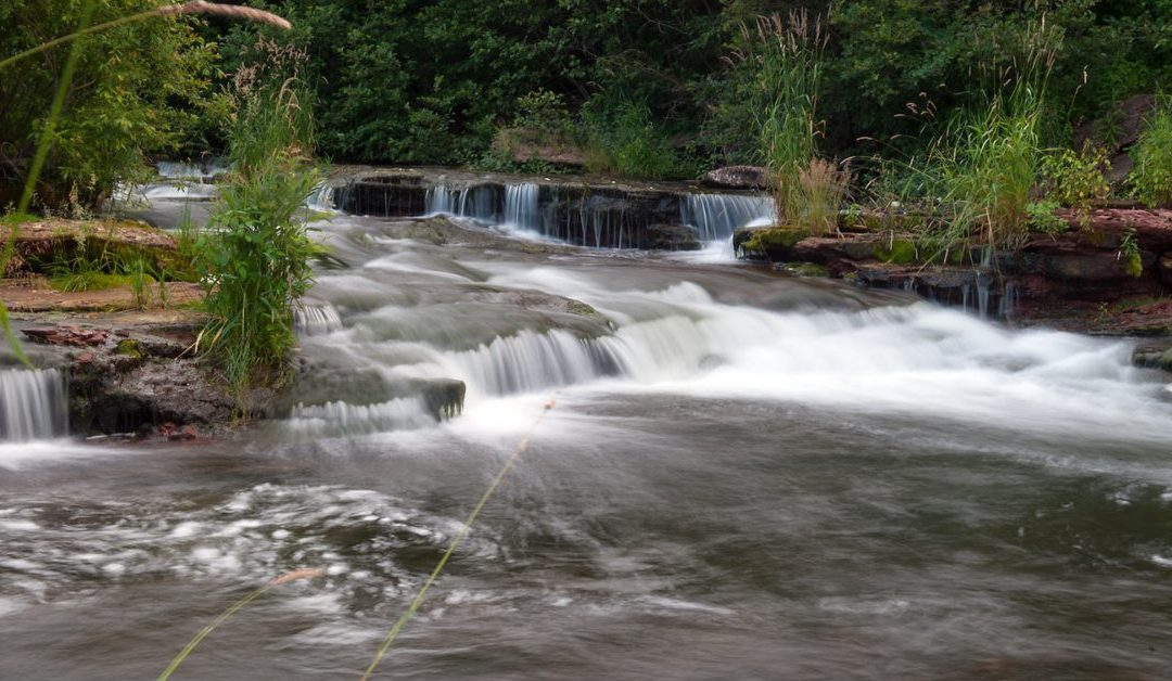 Statement on increasing nitrate levels in Island Rivers